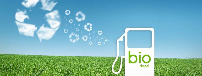 bio-diesel fuel